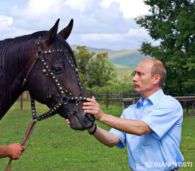 Putin Loshadka