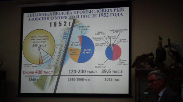 Don Rostov 09 02 2017 2