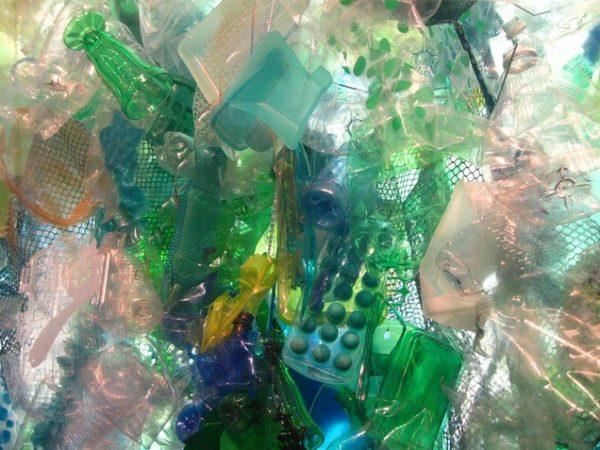 Plastik wwf