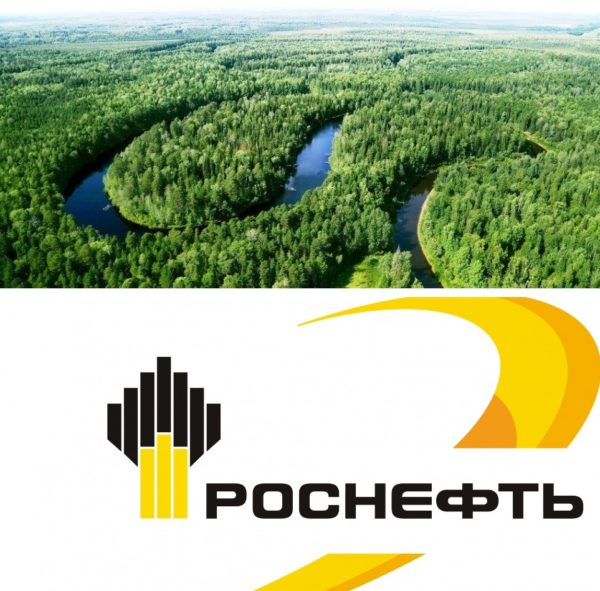 Les Rosneft 2020