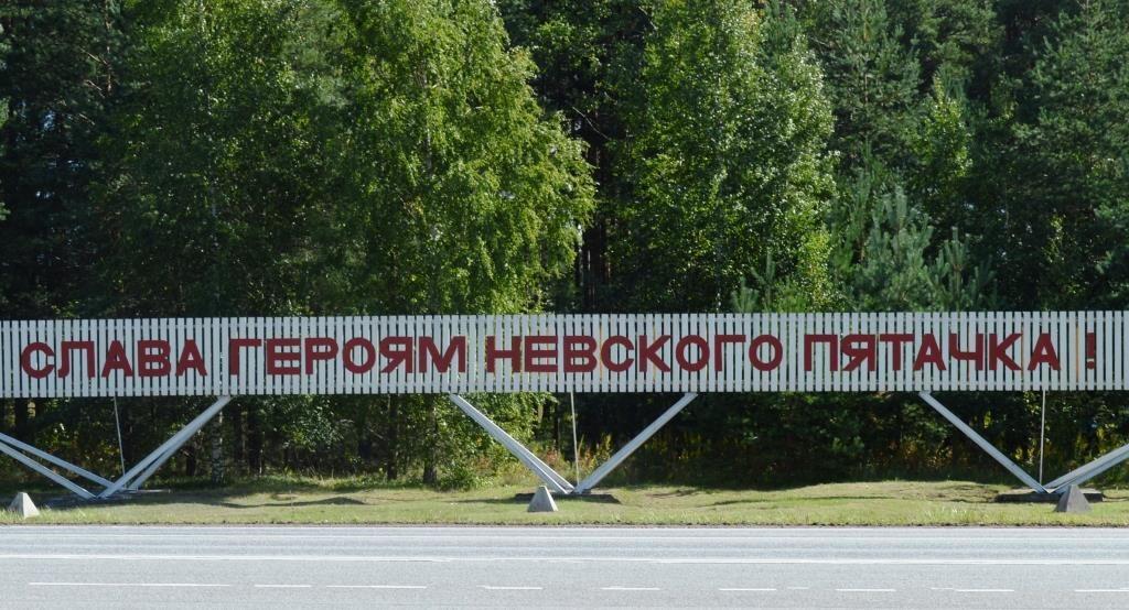24 08 2020 MegNacSovet LenOblast Nevskiy Pytachok 1