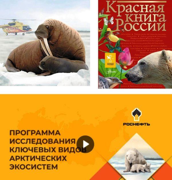 Arktika Rosneft Krasnay kniga 2020