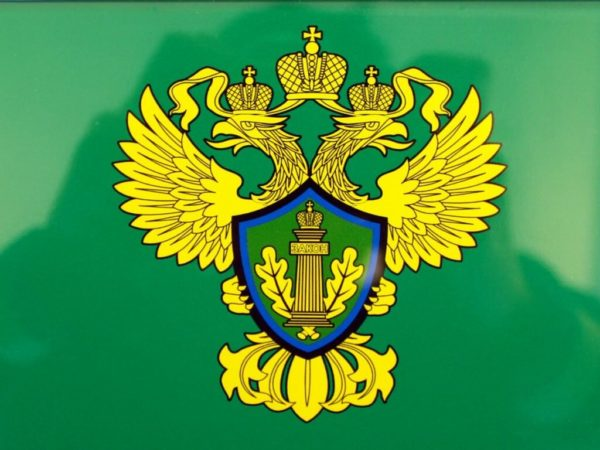 Rosprirodnadzor Logo 2021